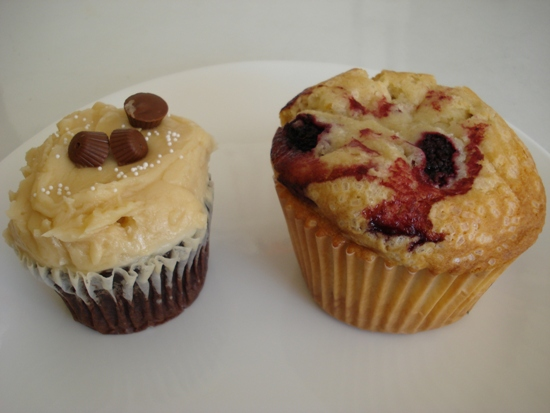 Influx Cafe cupcake & muffin