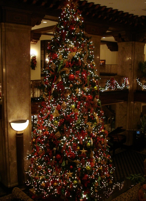 Peabody Christmas Tree